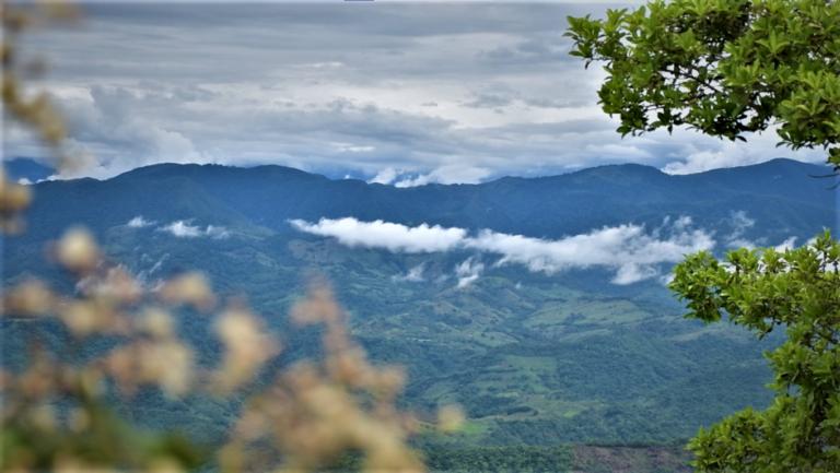 Cerro de la Cruz 3